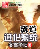 武道进化系统封面